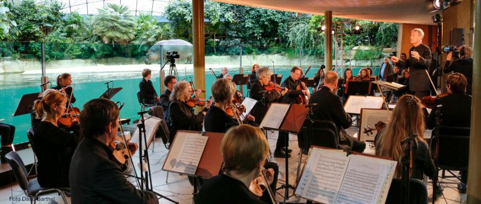 Berliner Symphoniker & ihr neuer Chefdirigent Hansjörg Schellenberger